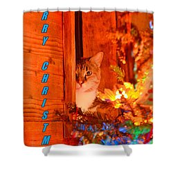 Merry Christmas Waiting For Santa Shower Curtain