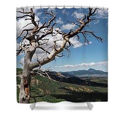 Mesa Verde Shower Curtain