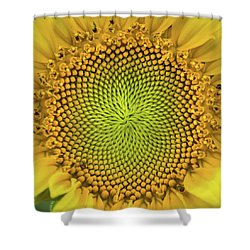 Shower Curtain featuring the photograph Mesmerizing by Bill Pevlor