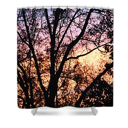 Mesmerizing Sunset Shower Curtain