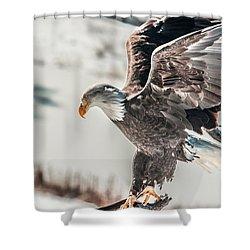 Metallic Bald Eagle  Shower Curtain