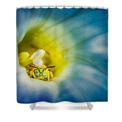 Metallic Green Bee In Blue Morning Glory Shower Curtain by Rikk Flohr