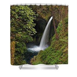 Metlako Falls In Spring Shower Curtain by David Gn