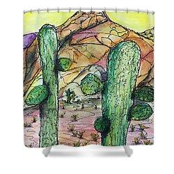 Mexican Desert Shower Curtain