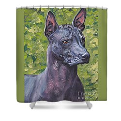 Shower Curtain featuring the painting Mexican Hairless Dog Standard Xolo by Lee Ann Shepard