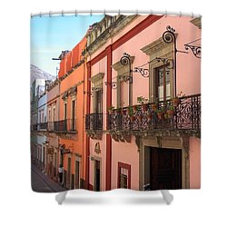 Shower Curtain featuring the photograph Mexico by Mary-Lee Sanders