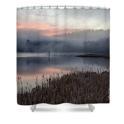 Mica Mists Shower Curtain