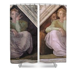 Restoration Before And After Michelangelo Ancestors Sistine Chapel  Shower Curtain