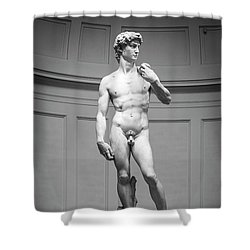 Michelangelo's David Shower Curtain