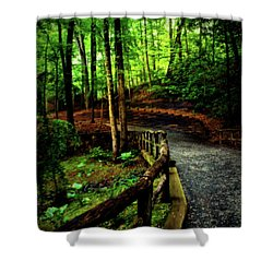 Shower Curtain featuring the photograph Michie Tavern No. 3 by Laura DAddona