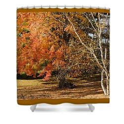 Michigan Autumn 1 Shower Curtain