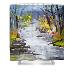 Michigan Stream Shower Curtain