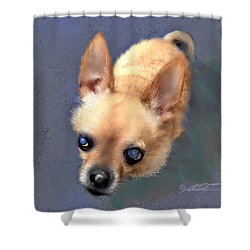 Mickey The Rescue Dog Shower Curtain