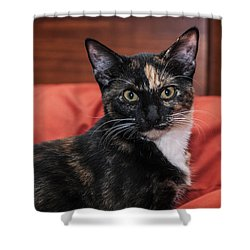 Shower Curtain featuring the photograph Micki Moo by Karen Slagle