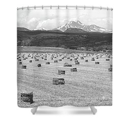 Mid June Colorado Hay  And The Twin Peaks Longs And Meeker Bw Shower Curtain by James BO  Insogna