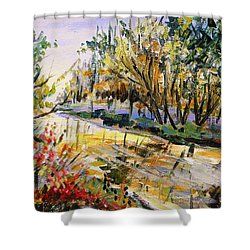 Shower Curtain featuring the painting Mid-morning Light by John Williams