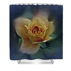 Mid September Rose Shower Curtain by Richard Cummings