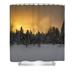 Mid-winter Glow Shower Curtain by Dan Hefle