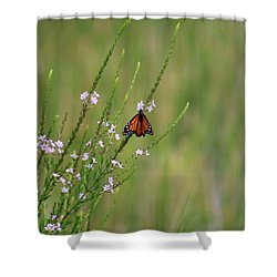 Midday II Shower Curtain