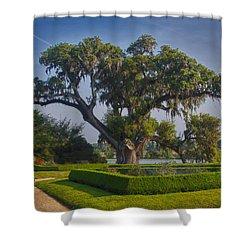 Middleton Oak Shower Curtain