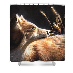 Midnight Fox Shower Curtain