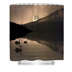 Midnight Moods Swan Lake In The Moonlight Shower Curtain by Diane Schuster