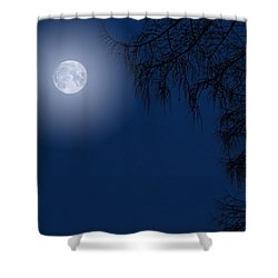 Midnight Moon And Night Tree Silhouette Shower Curtain