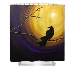 Midnight Raven Shower Curtain