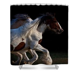 Midnight Run Shower Curtain