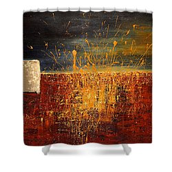 Midnight Summer, St Pete Beach  Shower Curtain