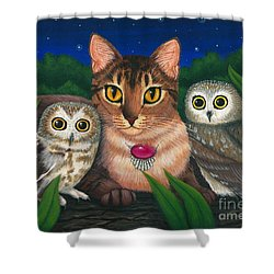 Shower Curtain featuring the painting Midnight Watching - Abyssinian Cat Saw Whet Owls by Carrie Hawks