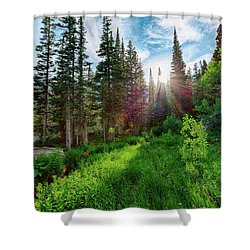 Midsummer Dream Shower Curtain
