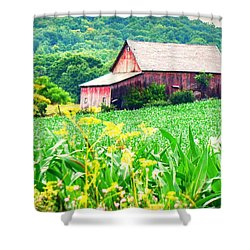 Shower Curtain featuring the photograph Midsummer  by Kendall McKernon