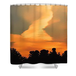 Midsummerset Shower Curtain