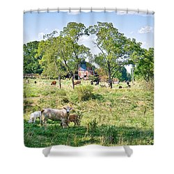 Midwest Cattle Ranch Shower Curtain