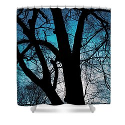 Might Oak 16x20 Shower Curtain