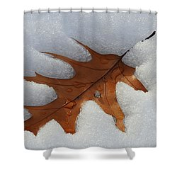 Mighty Oak Shower Curtain by Betty-Anne McDonald