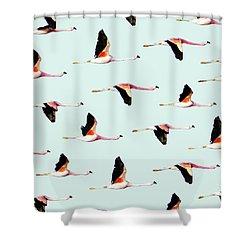 Migration Shower Curtain by Uma Gokhale