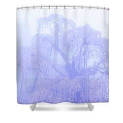 Shower Curtain featuring the photograph Miharu Takizakura Weeping Cherry01 by Tatsuya Atarashi
