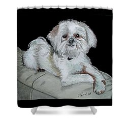 Shower Curtain featuring the painting Miki Dog by Ferrel Cordle