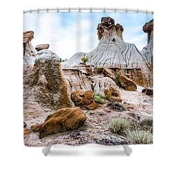 Mikoshika State Park Shower Curtain