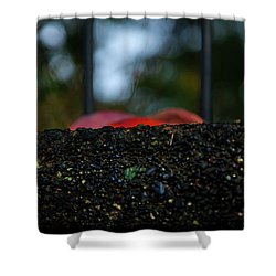 Miksang 2 Autumn Rain City Shower Curtain by Theresa Tahara