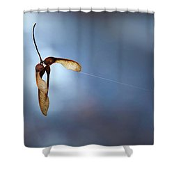 Miksang 3 Maple Seeds Shower Curtain by Theresa Tahara