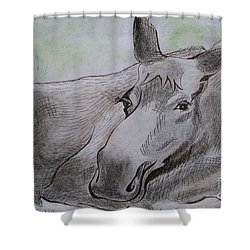 Mildred The Moose Resting Shower Curtain