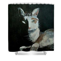 Milkshake The Cat Shower Curtain