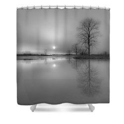 Milktoast Shower Curtain by Everet Regal