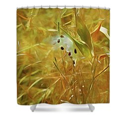 Shower Curtain featuring the mixed media Milkweed In Sunlight 2 by Lynda Lehmann