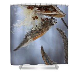 Shower Curtain featuring the photograph Milkweed by Viviana  Nadowski