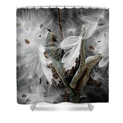 Milkweed Whisper Shower Curtain