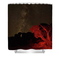 Milky Way And Juniper Shower Curtain